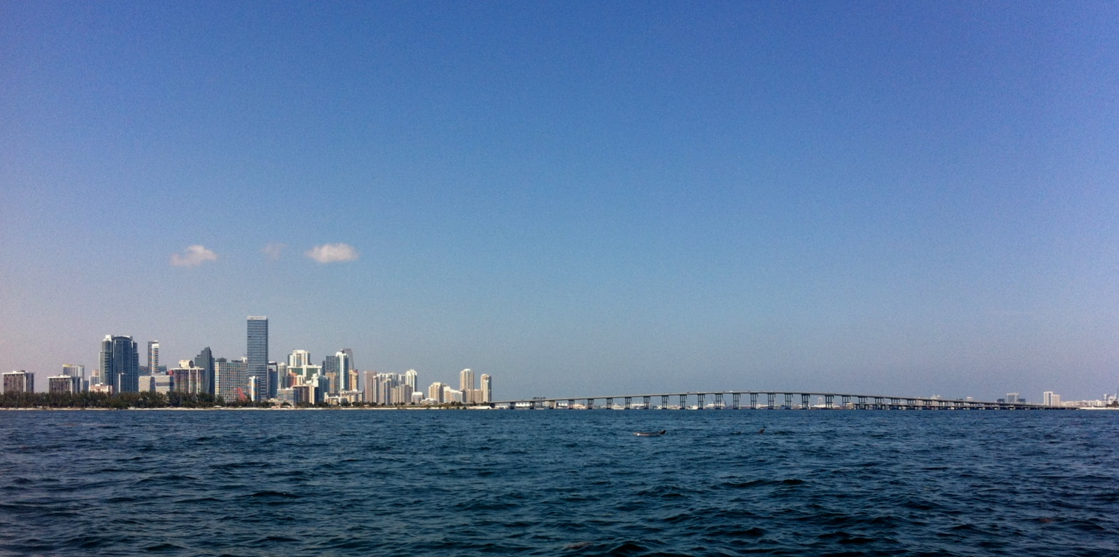 Miami from the Bay