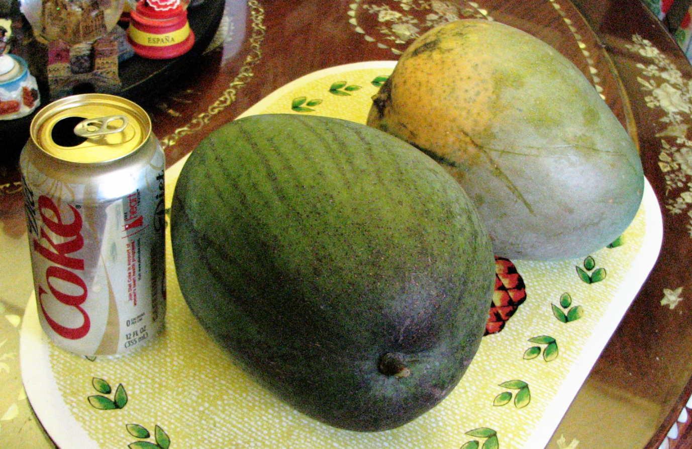 Mammtoth Mango