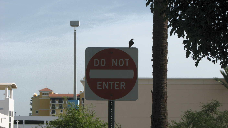 Do Not Do Not