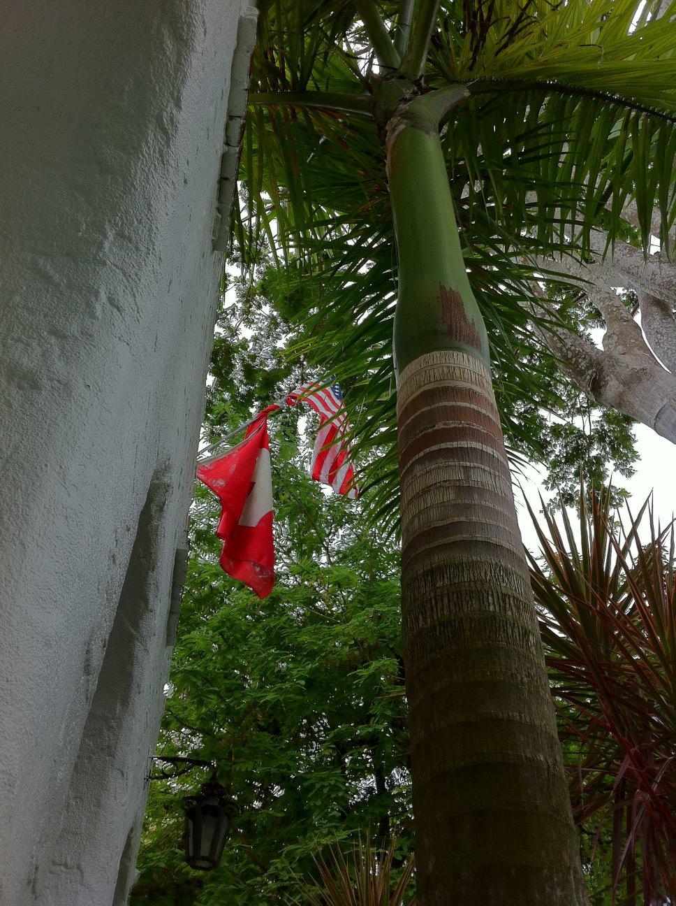 Star Bangles Banner