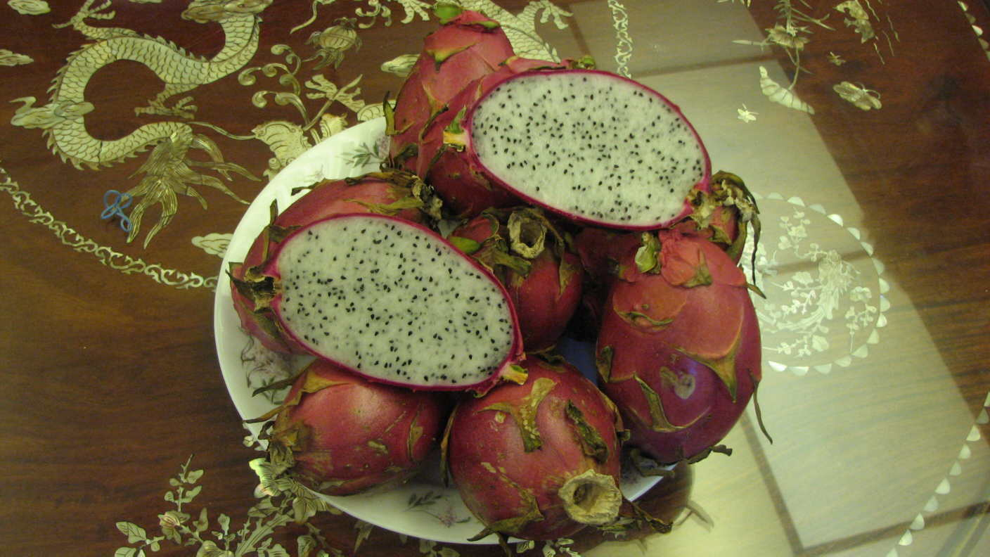 The Pearl Dragon Fruit