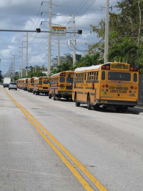 School buses awaiting...