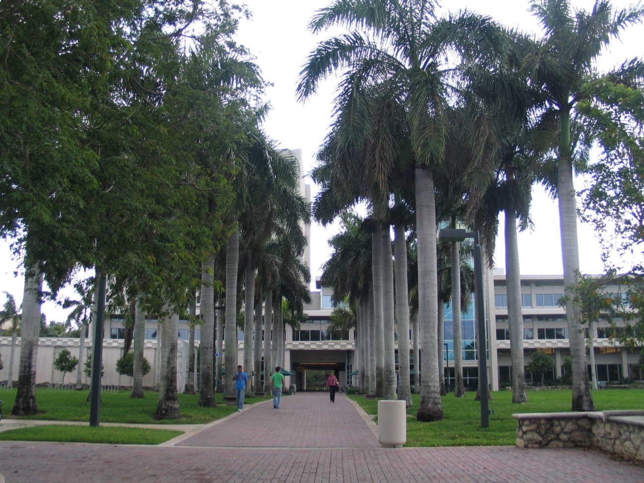 UM Main Library